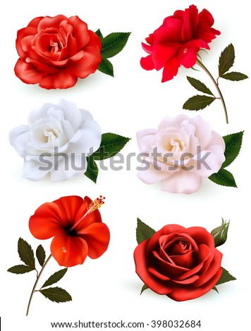 Set of a beautiful flowers isolated on a white background. Vector. - stock vector