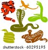 Set of a various snakes - stock vector