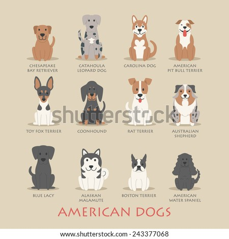 Set of american dogs , eps10 vector format - stock vector
