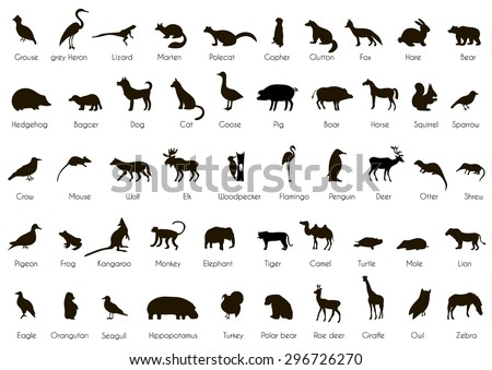 Set of animal and bird silhouettes with name.