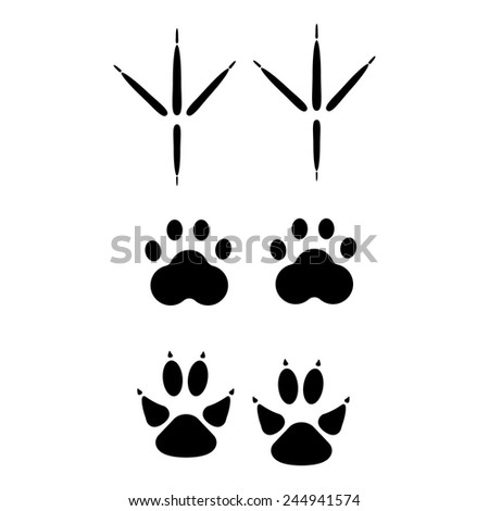 Set of animal footprints for ecology design or logo template.  - stock vector