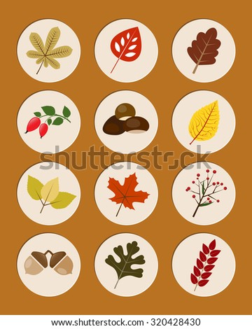Set of autumn nature symbols - leaves and fruits. Vector illustration. - stock vector