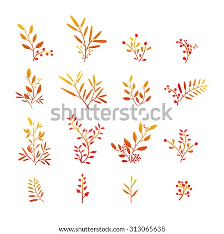 Set of  autumn plant elements. Bouquets, kits, ornaments of grass, twigs, leaves and berries. Simple style. Hand drawn. Vector. - stock vector