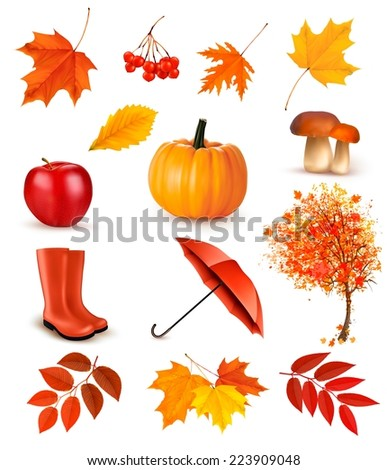 Set of autumn-themed objects. Vector - stock vector