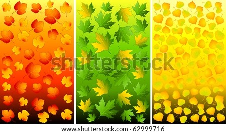Set of backgrounds with autumnal leaves. Vector.