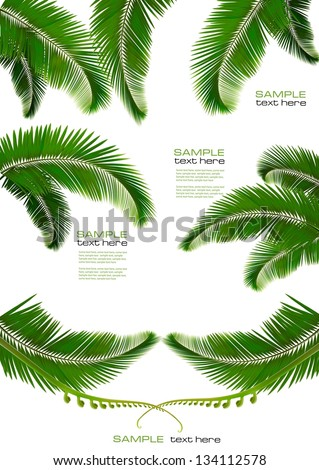 Set of backgrounds with palm leaves. Vector illustration - stock vector
