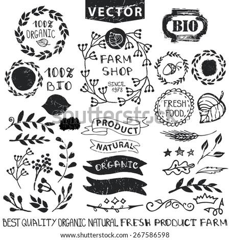 Set of badges,labels,logo,floral elements,wreaths and laurels.Organic,bio,natural design template.Hand drawing painting.Vintage silhouette vector,ink sketch.Logo maker,lettering. - stock vector