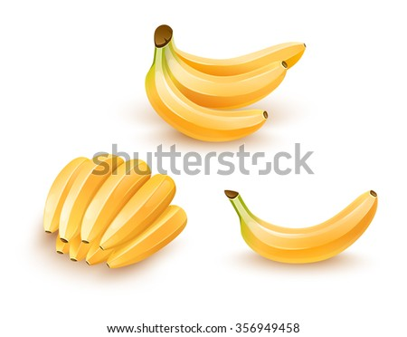 Set of banana tropical fruits. Isolated on white background. Organic food, yellow banana fresh fruits vector collection. - stock vector