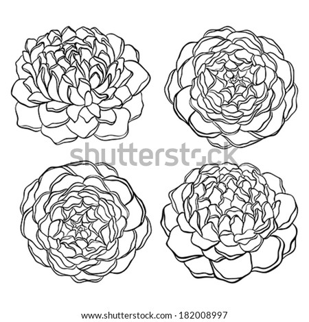 set of beautiful monochrome, black and white flower isolated on white background.