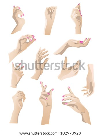 Set of 12 beautiful woman hands gestures.