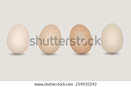 Set of beige and brown eggs vector realistic icon