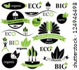 Set of bio and organic badges and labels. Vector illustration - stock vector