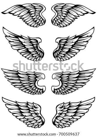 Set of bird wings isolated on white background. Design elements for logo, label, emblem, sign. Vector illustration