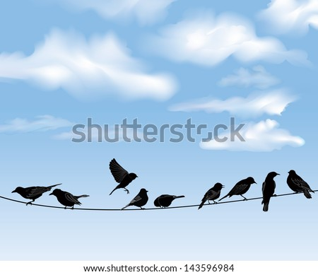 Set of birds on wires over blue sky background. A vector illustration