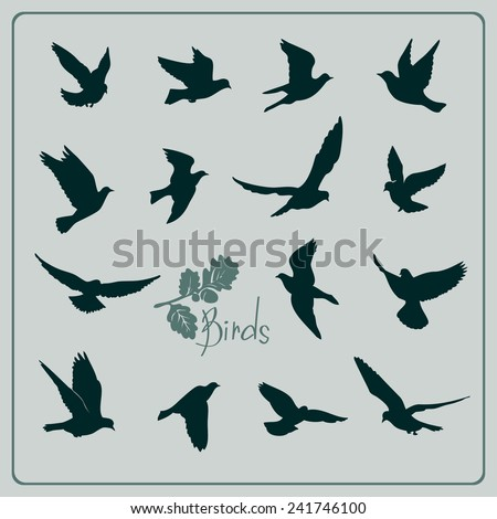 Set of birds silhouettes - flying. - stock vector