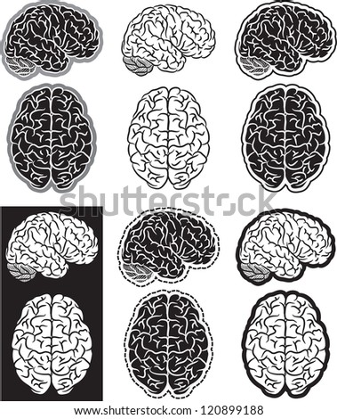 Set of black and white human brain silhouettes - stock vector