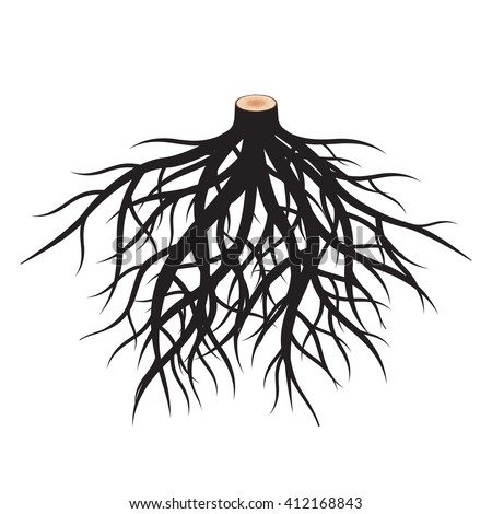 Set of Black Roots. Vector Illustration.