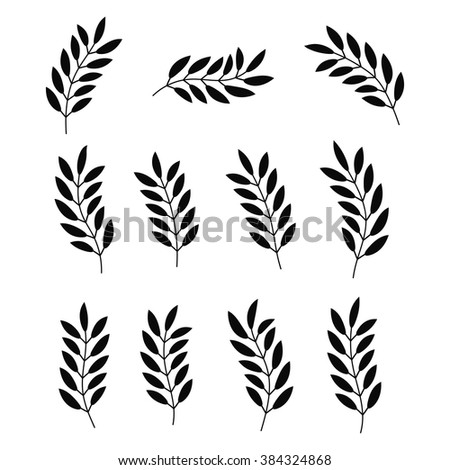 Set of black silhouette of plant isolated on white background.  Floral design elements collection. Foliage icon. Tree branch with leaves. Vector illustration. - stock vector