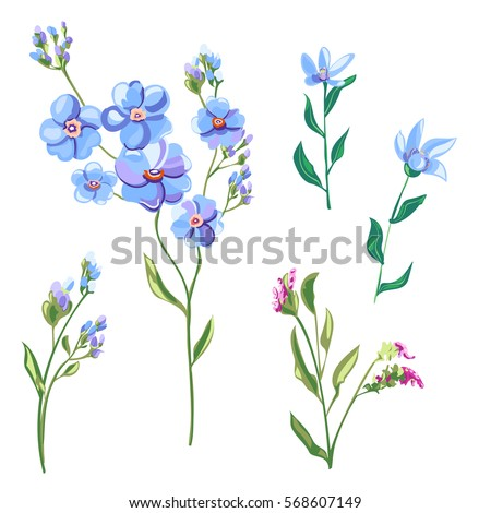 Set blue flowers buds forgetmenot tweedia stock vector 568607149 set of blue flowers and buds forget me not tweedia stems ccuart Image collections
