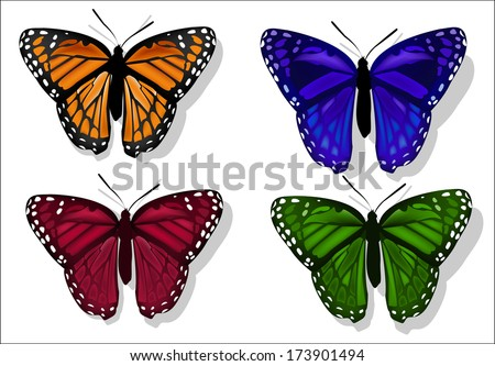 set of butterflies of different colors on a white ...