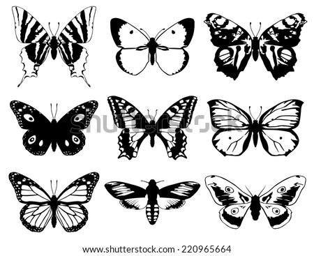 Set of butterflies silhouette with open wings. - stock vector