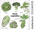 Set of cabbages - cauliflower, cabbage, Chinese cabbage, broccoli, Brussels sprouts, kohlrabi - stock vector