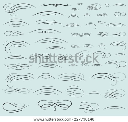 Set of calligraphic swashes and flourishes - stock vector