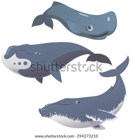 set of cartoon cute and funny whales, vector illustration - stock vector