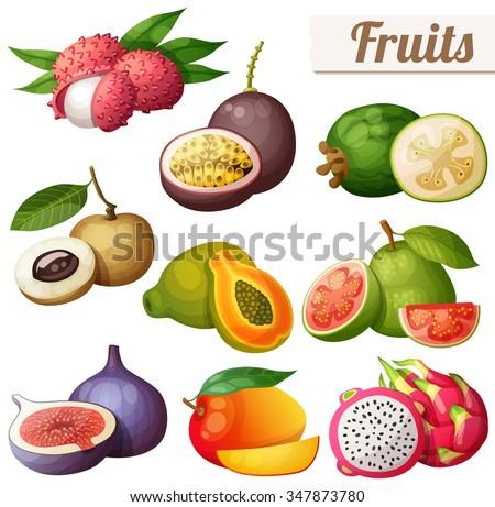 Set of cartoon food icons. Exotic fruits isolated on white background. Lychee (litchi), passion fruit, feijoa, longan, papaya (pawpaw), guava, fig, mango, pitaya (dragon fruit) - stock vector