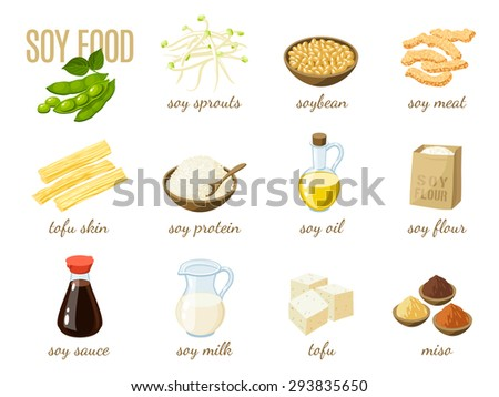 Set of cartoon soy food - soy milk, soy sauce, soy meat, tofu, miso and so. Vector illustration, isolated on white, eps 10. - stock vector