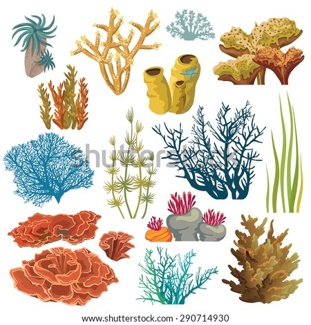 Set of cartoon underwater plants and creatures. Vector isolated corals and algae. - stock vector