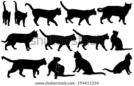 set of cats isolated on white - stock vector