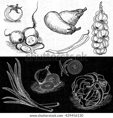 Set of chalk hand drawn, in sketch style, food and spices, black and white chalkboard background. Eggplant, onions, cabbage, garlic, tomato, pepper, radish, turnip, beets. Vector illustration. - stock vector