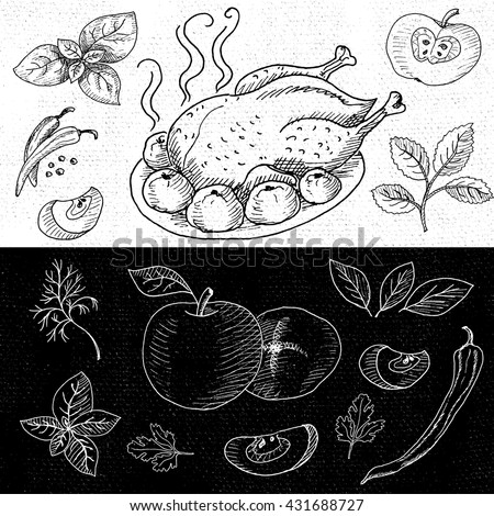 Set of chalk hand drawn, in sketch style, food and spices, black and white chalkboard background.  Roasted grill chicken. Chicken, apples, onion, pepper, tomato, cucumber, basil. Vector illustration.