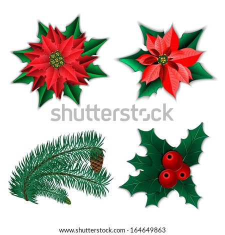set christmas decorations christmas flower poinsettia stock vector, Natural flower