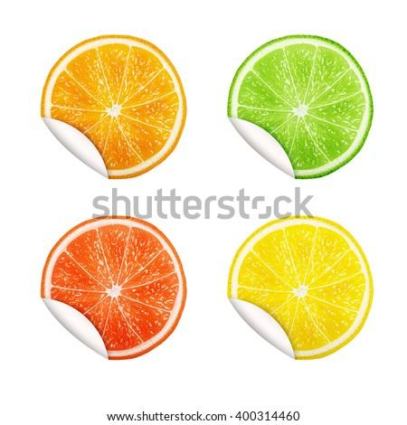 Set of citrus fruits. Orange, Lime, Grapefruit, Lemon. eps10 vector illustration - stock vector