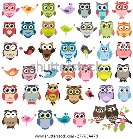 Set of color cartoon owls and birds - stock vector