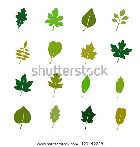 Set of color tree leaves icon