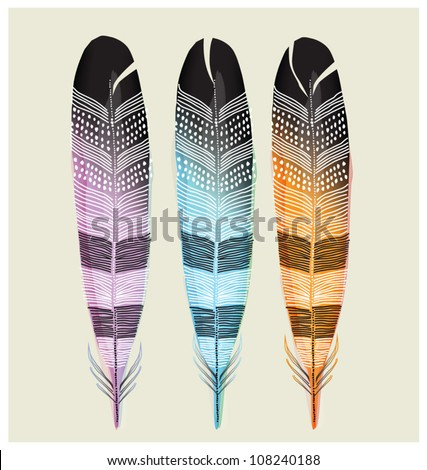 SET OF COLORED FEATHERS.  Vector illustration editable file.  - stock vector