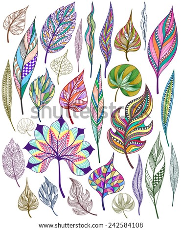 Set of colorful abstract leaves. Vector illustration. - stock vector
