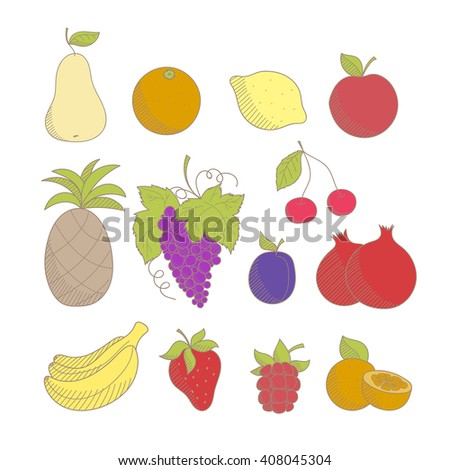 Set of colorful sketched hand drawn fruits and berries: apple, pineapple, grape, lemon, orange, banana, pear, cherry, strawberry, plum, pomegranate