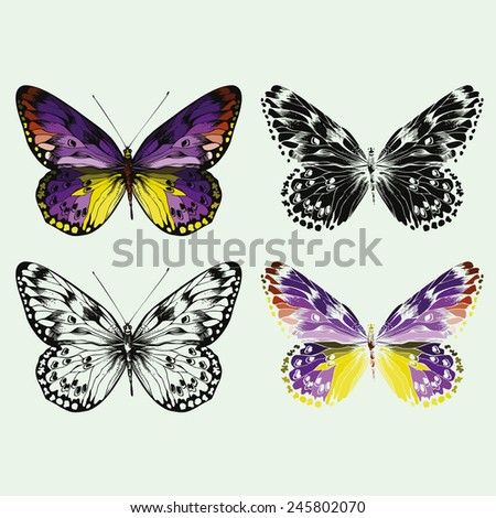 Set of colorful vector butterflies, hand-drawing. - stock vector