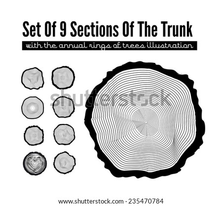 Set of 9 cross section of the trunk with tree rings, vector illustration - stock vector