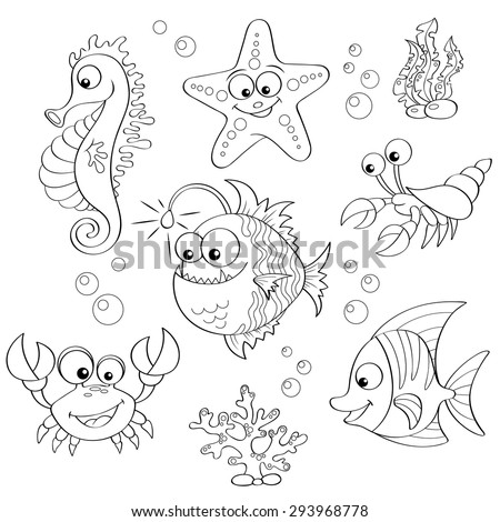 fish color stock images royalty free images vectors
