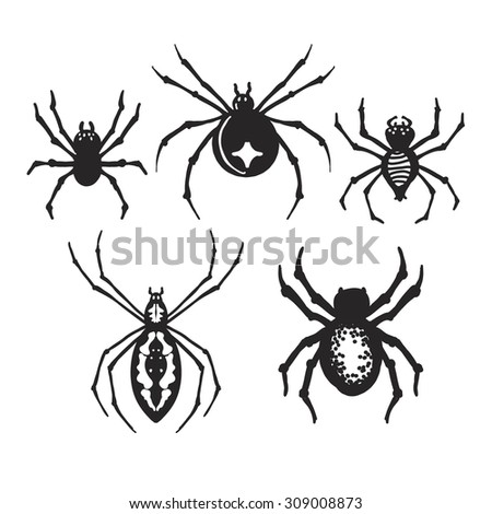 set of decorative halloween spiders - Halloween Spider