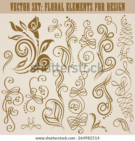 Set of decorative hand drawn calligraphic elements, floral pattern for page design. Elegant vintage collection. Vector illustration. - stock vector