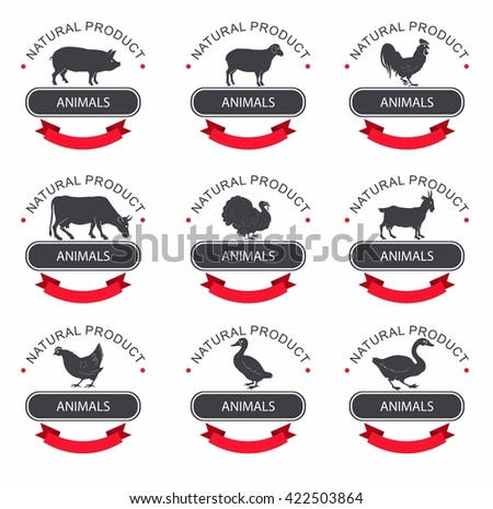 Set of detailed quality vector silhouettes of chicken, rooster, goose, turkey, duck. label templates with farm birds. Set of labels, badges and design elements/ pork, beef, lamb, milk - stock vector