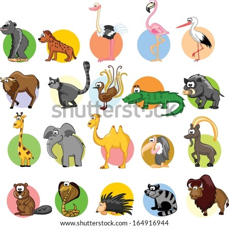 Set of different animals and birds - stock vector