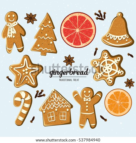 Set of different gingerbreads: man, Christmas tree, bell, star,snowflake,candy cane, house and citrus fruits slices.Vector illustrated Christmas treats collection. Homemade cookies and fragrant spices