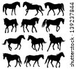 Set of 12 different moving horses silhouettes - stock vector